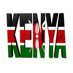 Door to Office Service to Kenya